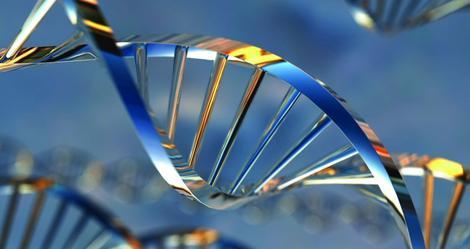 9493_DNA